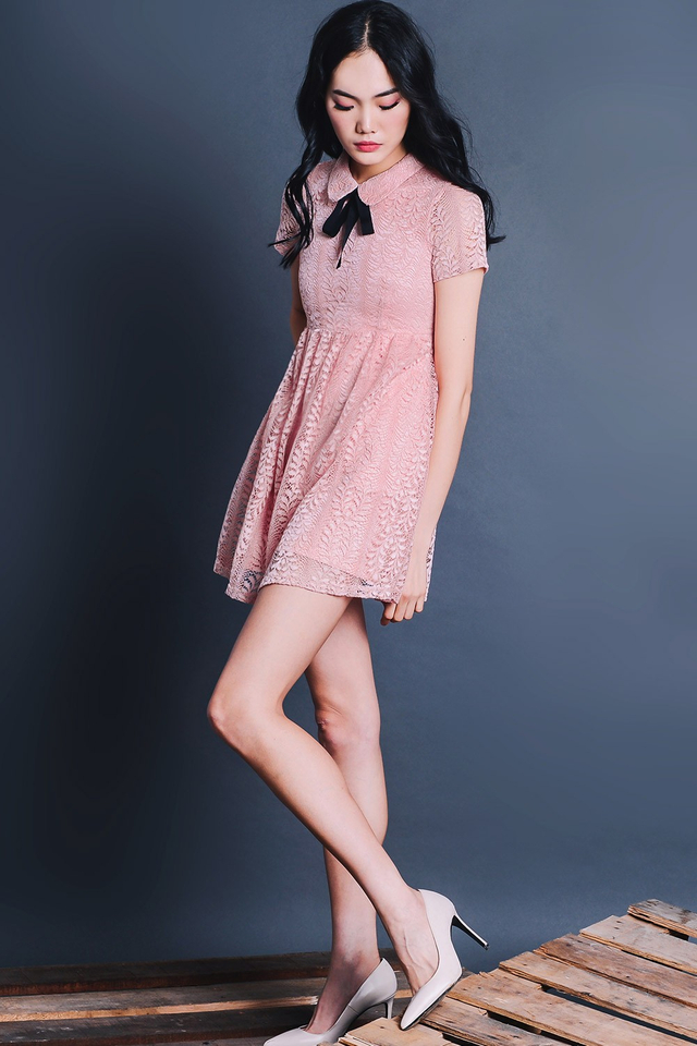 ASTER LACE DRESS IN PINK