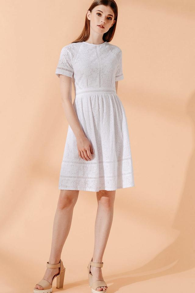 ANDRES EYELET DRESS IN WHITE