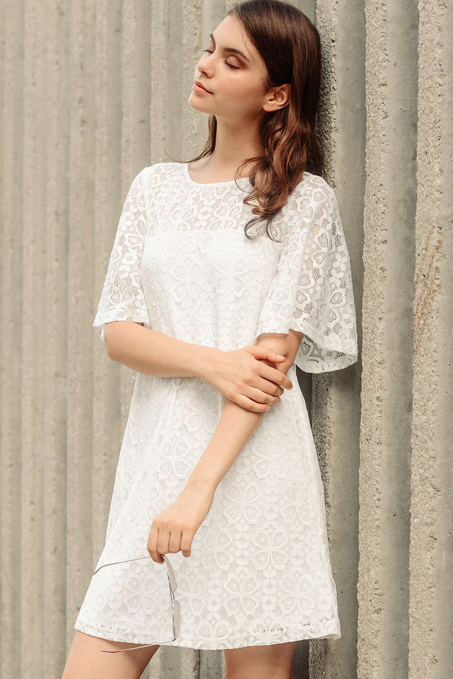 CHADWICK LACE DRESS IN WHITE