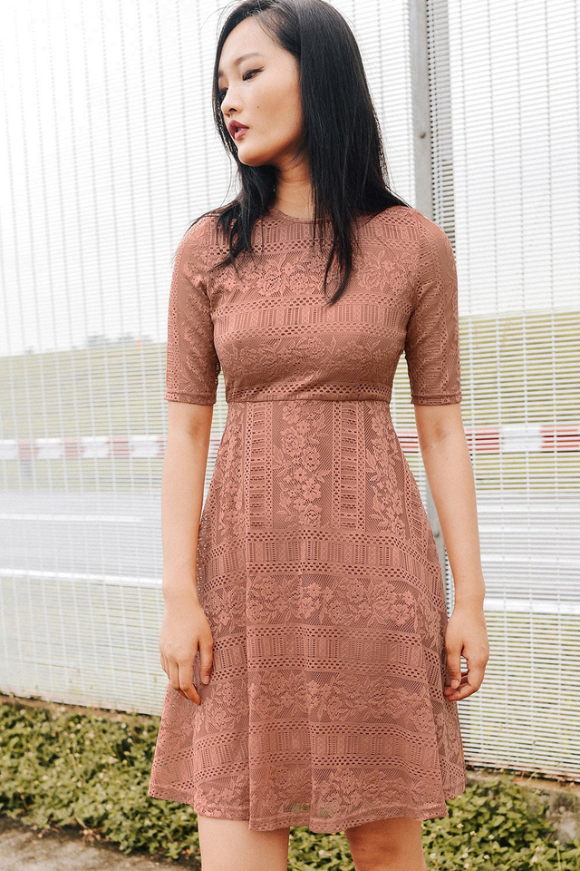ANDROS LACE DRESS IN DUSK ROSE